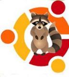 ubuntu raring quingtaill.jpg